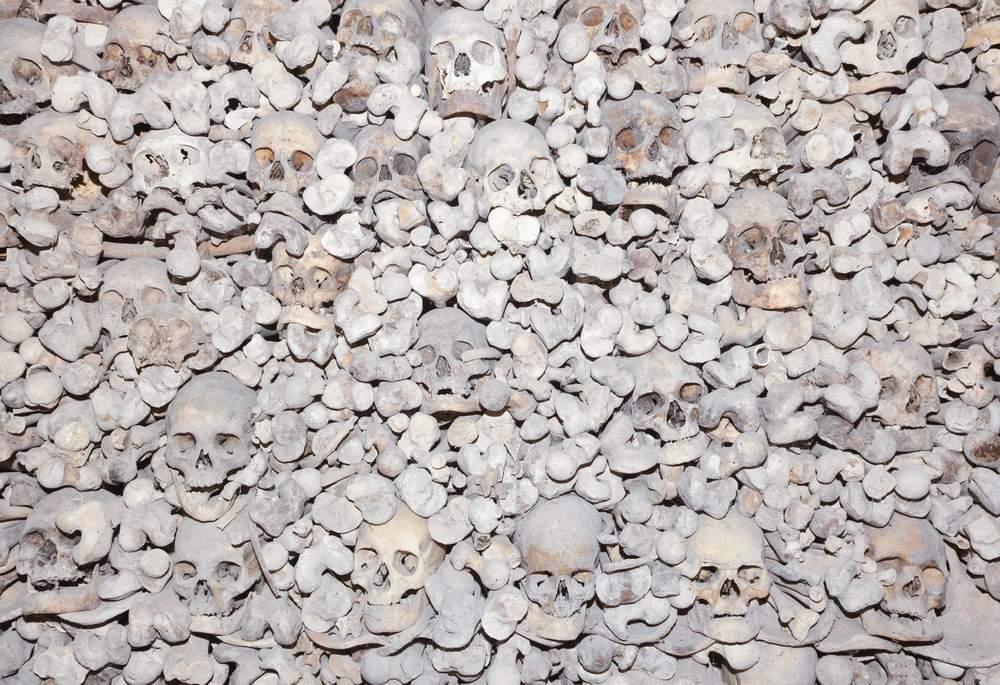 bones wassa