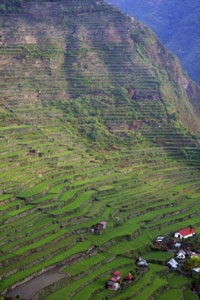 batad-rice-terraces-philippines1