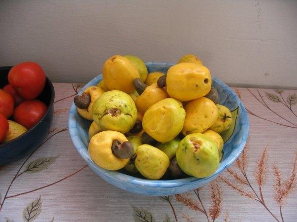 cashewfruit