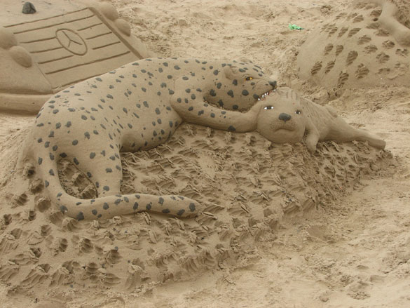 SandCats