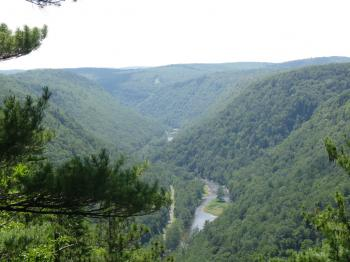 Pennsylvania\'s Grand Canyon, Pine Creek Canyon