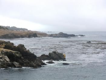 California's Salt Point State Park