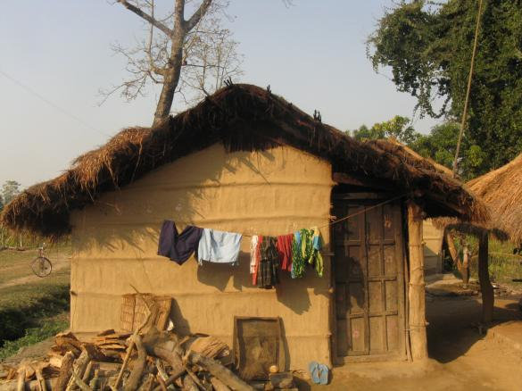 A house in the Terai region