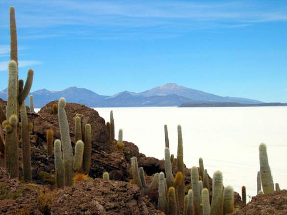 bolivia  12 Countries Why You Should Go There Now bolivia1