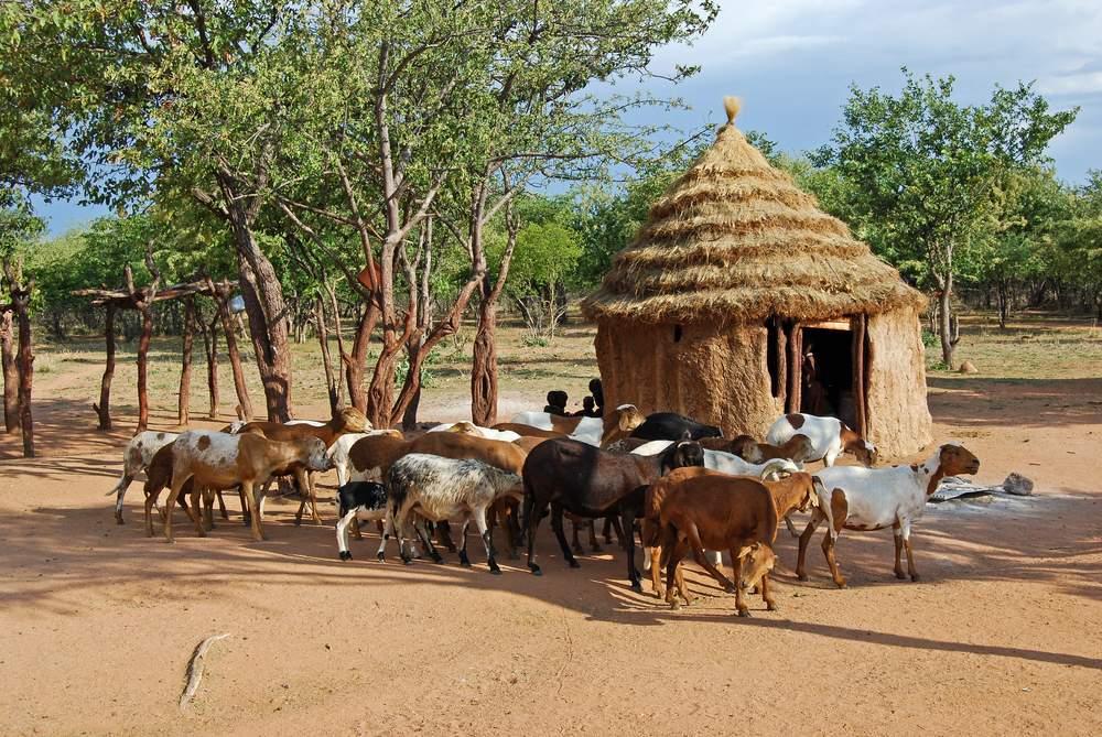 9 Africa Himba
