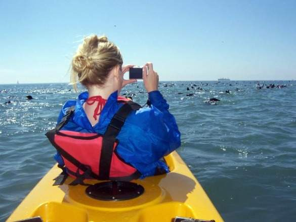 KayakingInSwakopmund