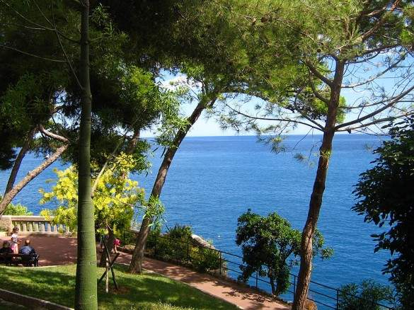 Memories of a tour to the sovereign city state of monaco for Jardin exotique monaco
