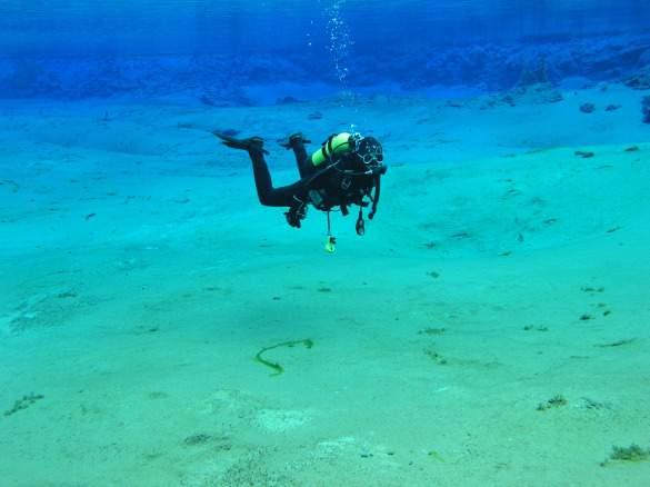 Andrew diving_picnik