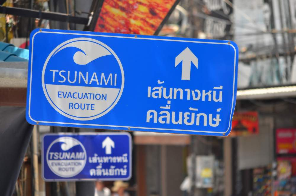 Essay on tsunami   Classification essay on music essay on tsunami      jpg