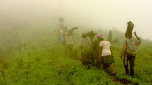 A line of women climbing back up the mountain, to reach their village