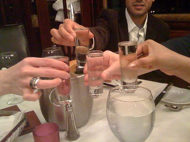 Image result for vodka toasts pictures