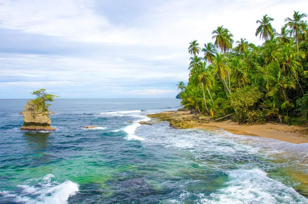 Carib CR