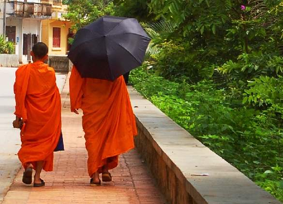 Monks walking - Luang Prabang, Laos