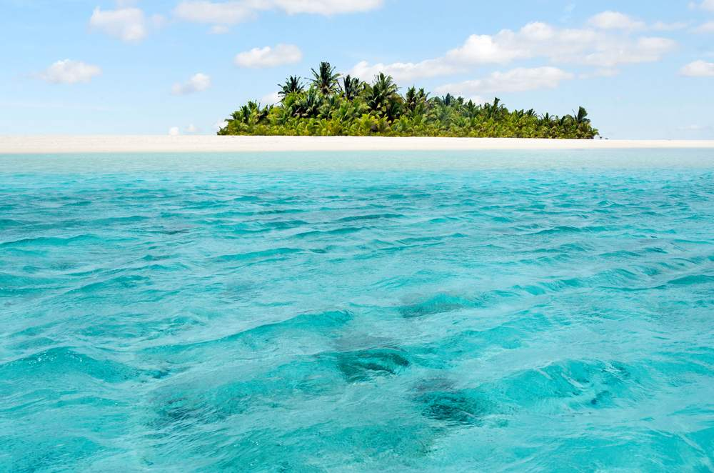 easy cook islands