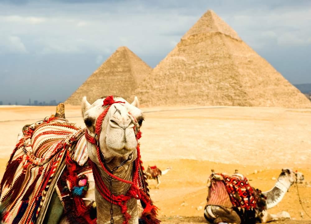 2Wk-egypt