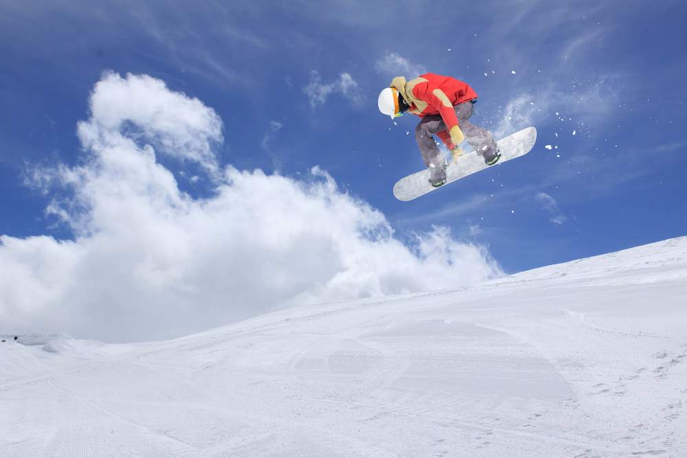 fest snowboard