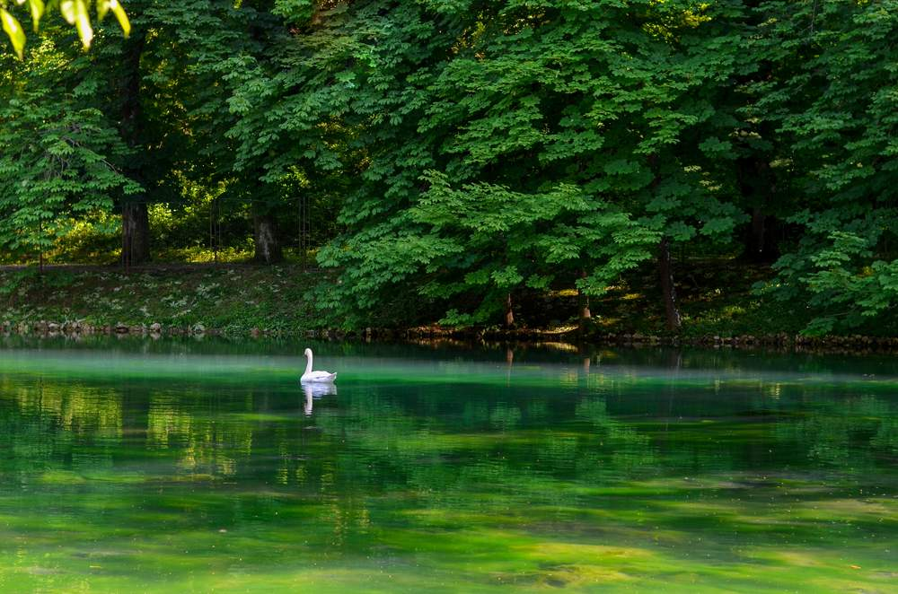 Vrelo Bosne Park, Bosnia
