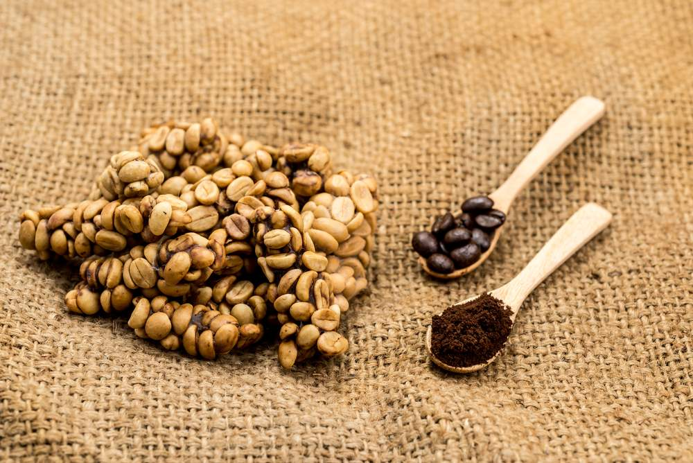 drink excrement coffee in Indonesia