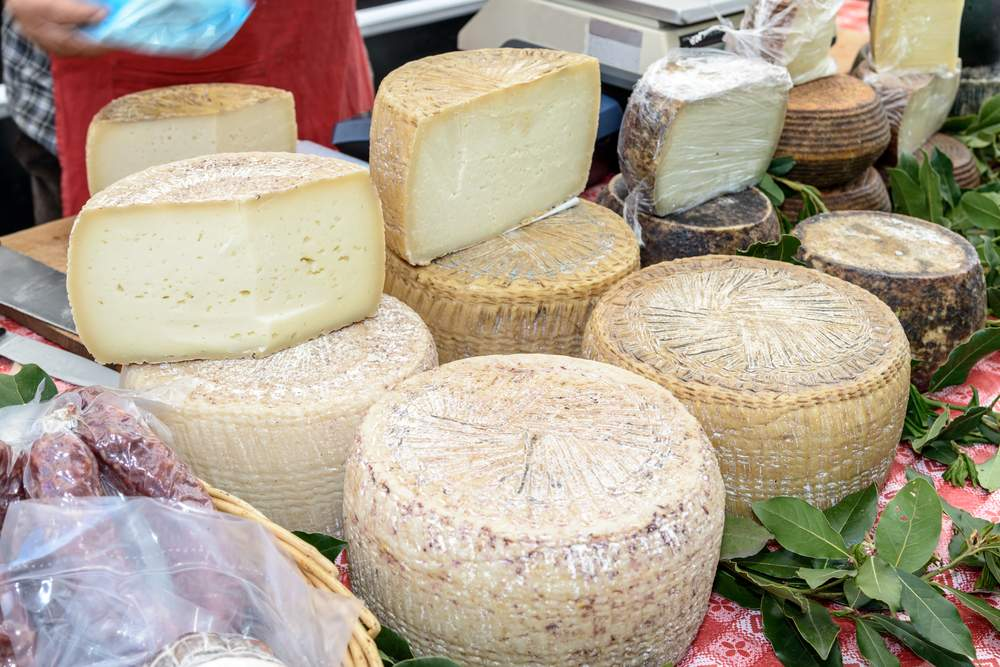 Italian cheese is used to make a sicilian delicacy, maggot cheese