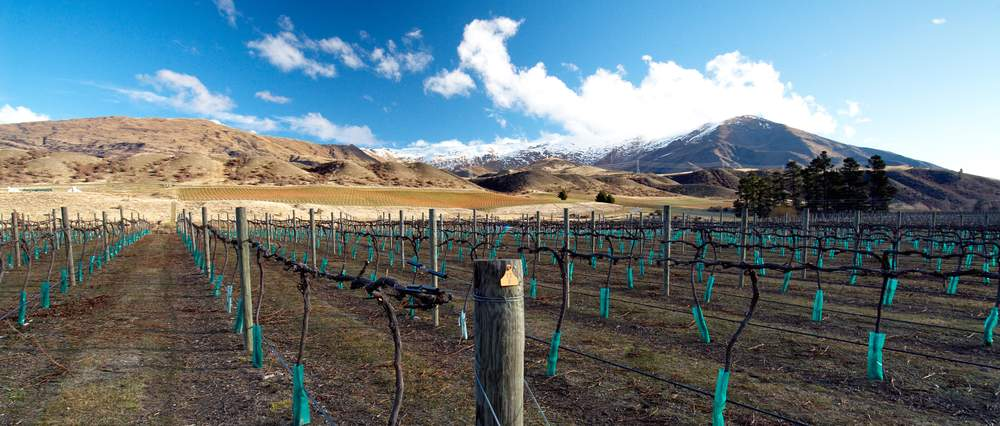 Central Otago, New Zealand