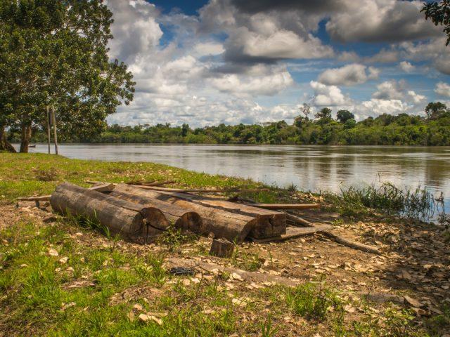River in the Amazon jungle