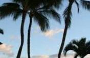 Paradise with Pockets of Reality – Maui, Hawaii, USA