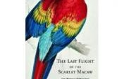 Book Review: The Last Flight of the Scarlet Macaw by Bruce Barcott &#8211; Belize, Central America