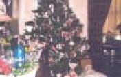 Victoria, BC Canada – December 2001