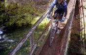 Biking Oregon's McKenzie River Trail – Willamette National Forest