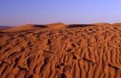 Walking with Camels: A Trek in the Sahara – Morocco
