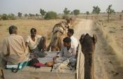 Hanging with the Camel Man – Bikaner, India