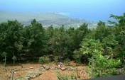 Hawaii's Big Island and a Different Kind of Travel