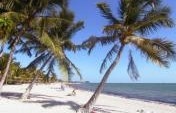 The Florida Keys – An Ideal Vacation Destination