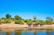 Nine Amazing Adventures to Add to a Trip to Southern Africa