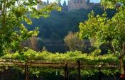 The Next Table – An Encounter in the Shadow of the Alhambra in Granada, Spain