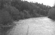 Lane County, Western Oregon – Western Oregon, USA