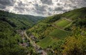 Germany By the Glass: Three Drinking Destinations Not to Miss