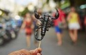 12 Dangerous Delicacies From Around the World
