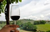 The Budget Traveler's Guide to Wine Tasting in Italy