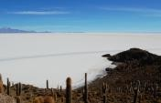 Tips for Visiting the Salar de Uyuni in Bolivia