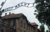 Reliving the Past &#8211; Auschwitz, Poland