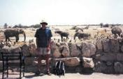 Big Brother's African Brother #54: Tsumeb to Etosha National Park, Namibia