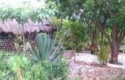 And Then I Fell In Love – XOFA Eco-Village, Ghana
