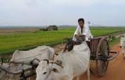 Cambodia on $25 Per Day