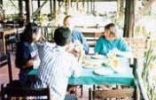 Finding a Good Thai Restaurant in Chiang Mai – Chiang Mai, Thailand