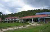Jungle Fever – Bario, Sarawak, Malaysian Borneo