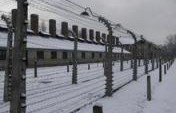 Chilling – Auschwitz, Poland