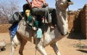 White Camel Dream &#8211; Burkina Faso/Niger