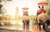 Is Elephant Tourism Ethical?
