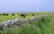 Treasures of  the Orkney Islands – Scotland, United Kingdom, Europe